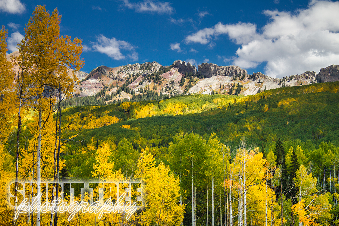 The Fall Colors of Colorado