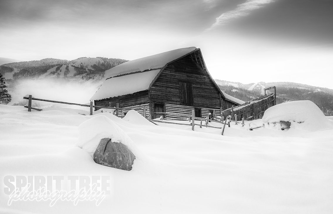 Steamboat Barn in Black and White