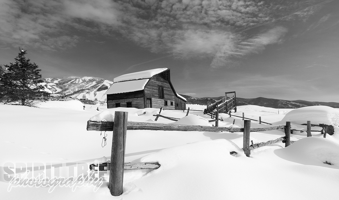 Snowy Steamboat Springs in Black and White
